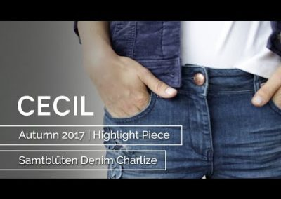 CECIL – Autumn 2017